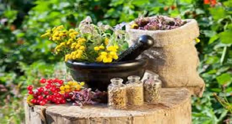 Чистка печени народными средствами: быстродействующие методы для чистки печени дома