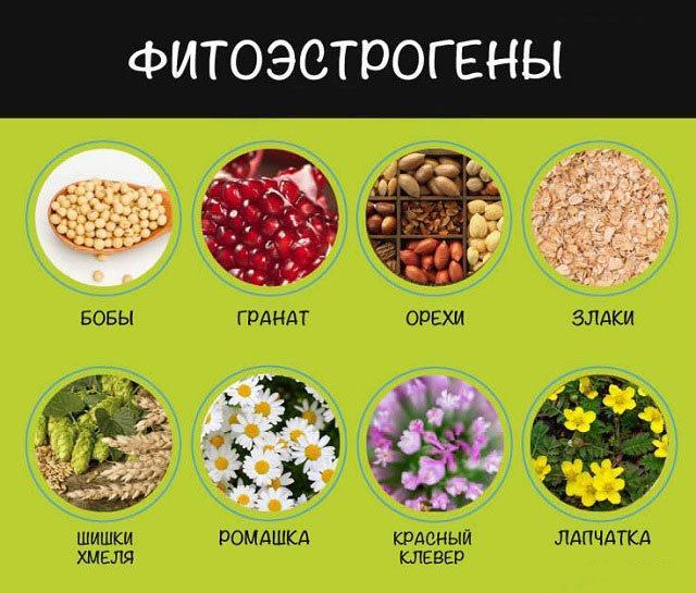 Фитоэстрогены в продуктах питания.