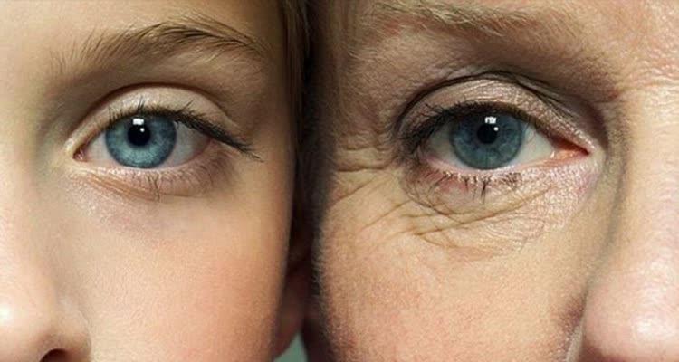 Молодой и старый глаз