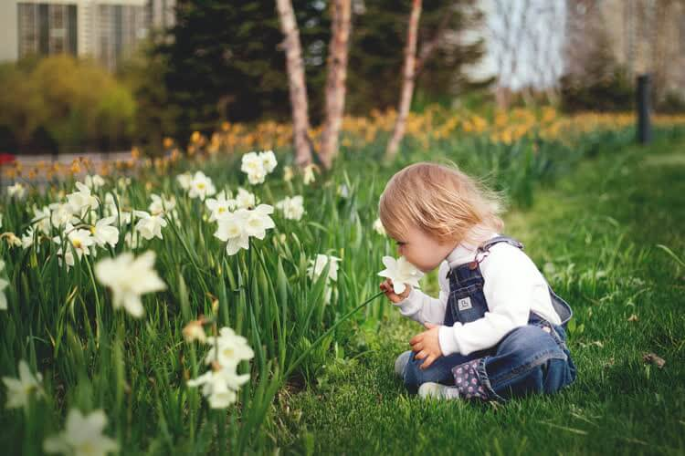 Малыш нюхает белые цветы